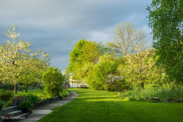 Garten Bernhardsmühle